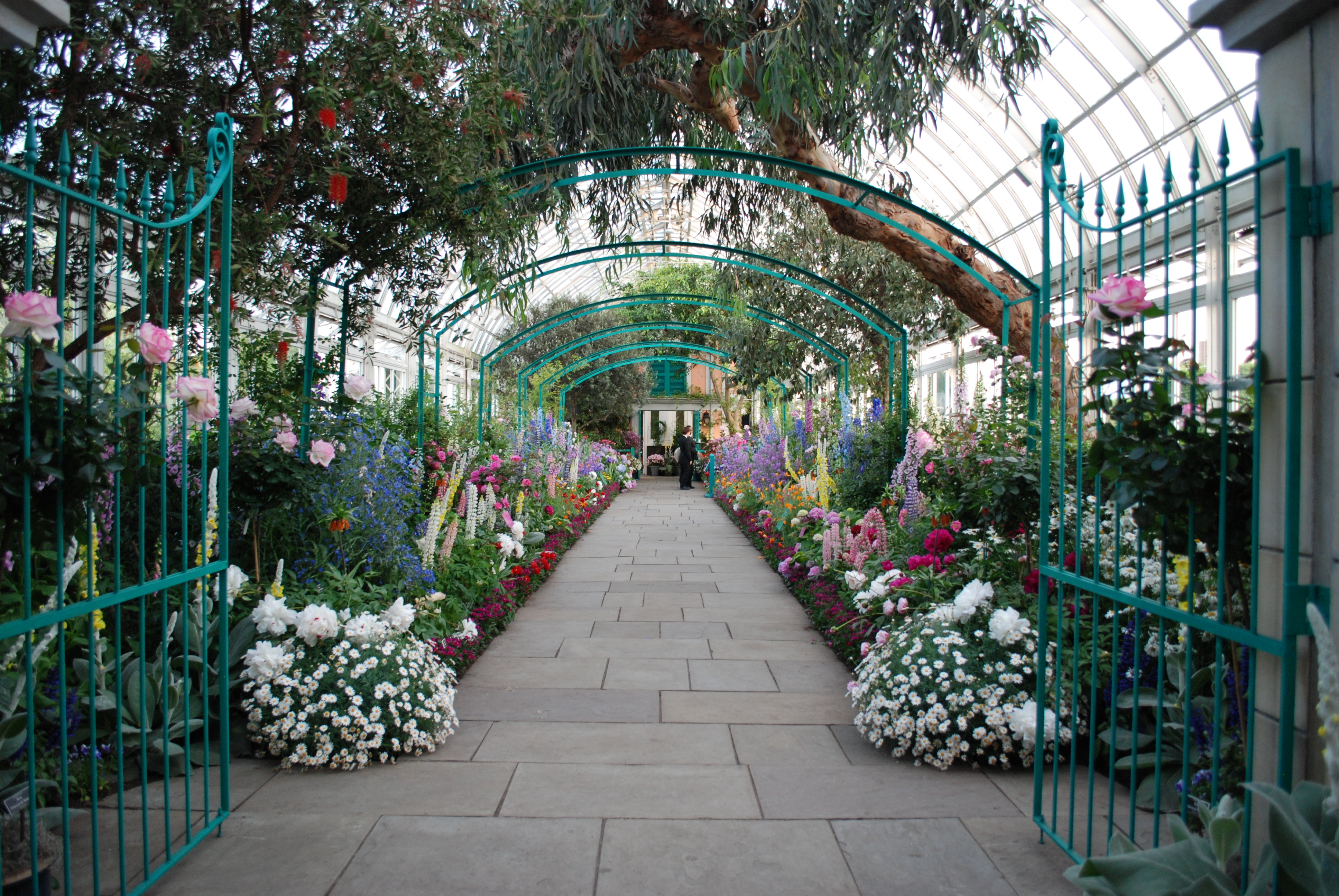 New York Botanical Garden Monets Garden Daedalus